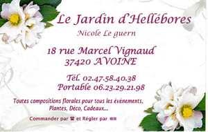 tn_Jardi d'Hélébore001